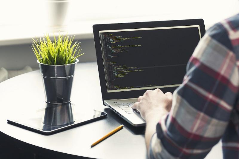 Degree in Web Development