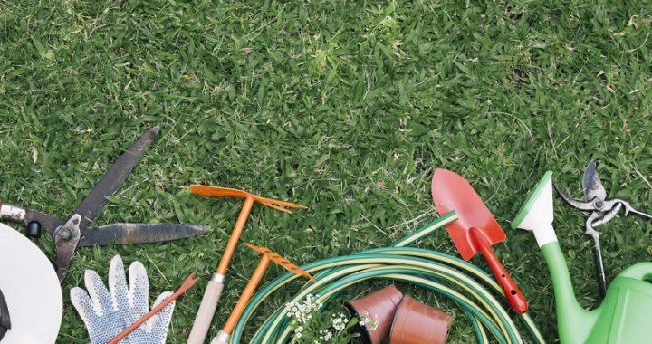 Basic tools for beginner gardeners